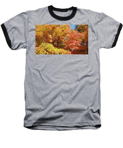 Fall Explosion Of Color Baseball T-Shirt