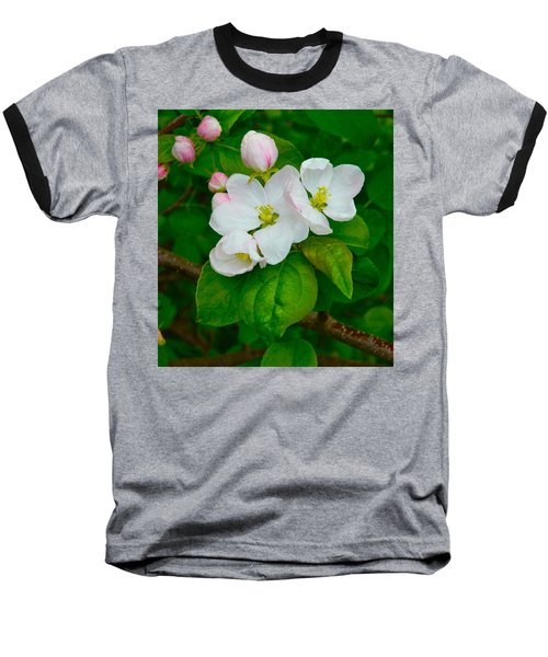 Baseball T-Shirt featuring the photograph Apple Blossoms by Johanna Bruwer