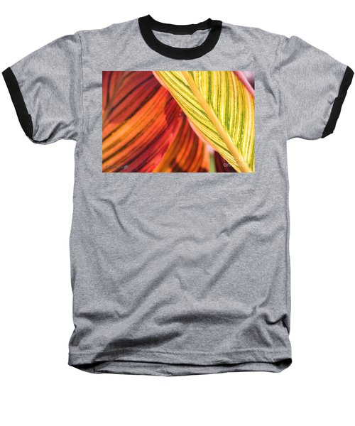 Canna Lily Named Durban Baseball T-Shirt