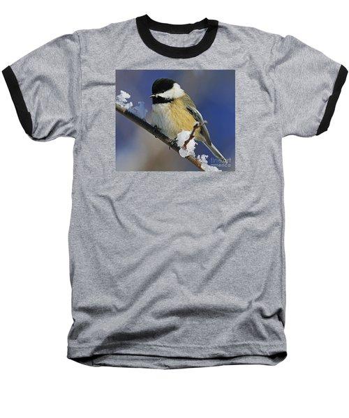 Winter Chickadee... Baseball T-Shirt by Nina Stavlund