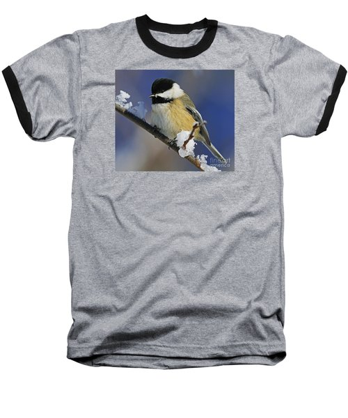 Winter Chickadee... Baseball T-Shirt