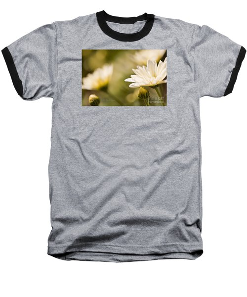 Chrysanthemum Flowers Baseball T-Shirt