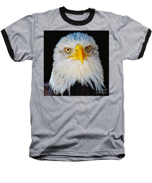 Closeup Portrait Of An American Bald Eagle Baseball T-Shirt