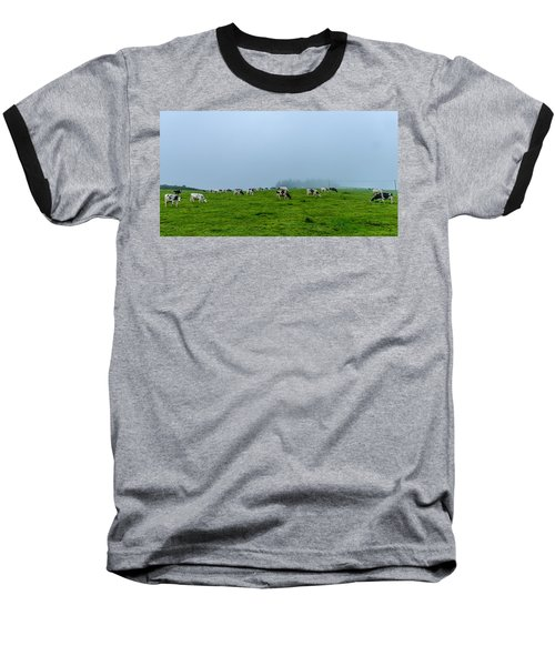 Cows In The Field Baseball T-Shirt