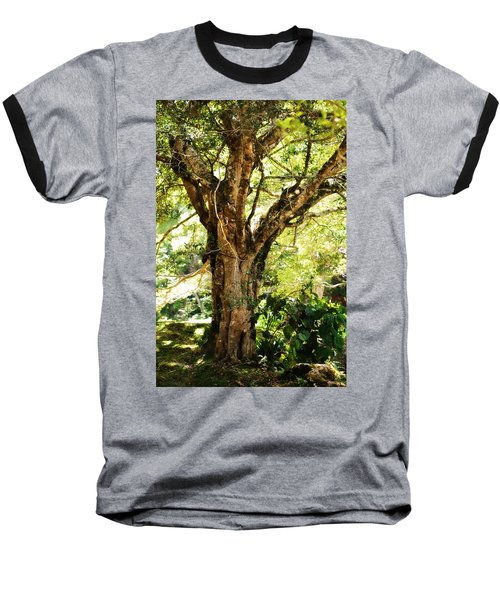 Kingdom Of The Trees. Peradeniya Botanical Garden. Sri Lanka Baseball T-Shirt