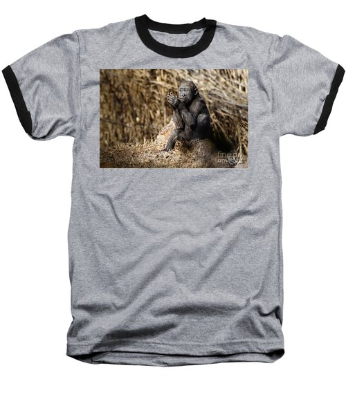 Quiet Juvenile Gorilla Baseball T-Shirt