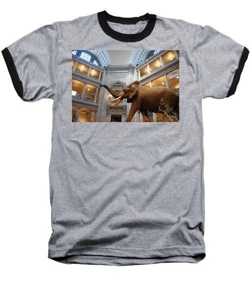 Bull Elephant In Natural History Rotunda Baseball T-Shirt