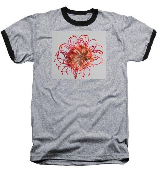 Grevillea Flower Baseball T-Shirt by Shirley Mitchell