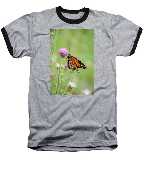 Baseball T-Shirt featuring the photograph Monarch Butterfly by Heidi Poulin