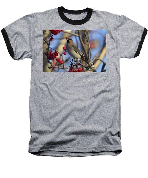 Morning Snack Baseball T-Shirt