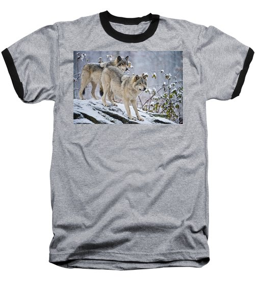 Timber Wolves Baseball T-Shirt