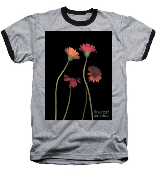 4daisies On Stems Baseball T-Shirt