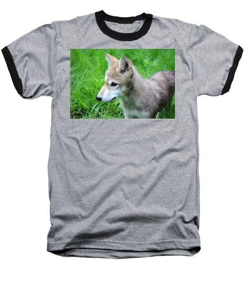 Gray Wolf Pup Baseball T-Shirt