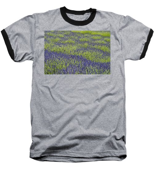 Lavendar Field Rows Of White And Purple Flowers Baseball T-Shirt