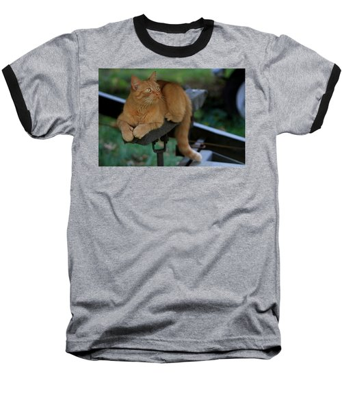 5-toe'd Orange Cat Of The Marina Baseball T-Shirt