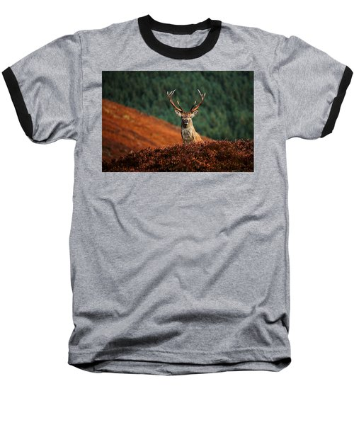 Red Deer Stag Baseball T-Shirt