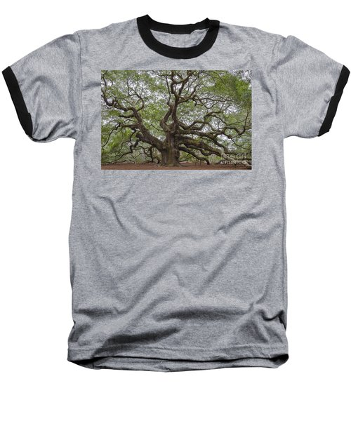 Sc Angel Oak Tree Baseball T-Shirt