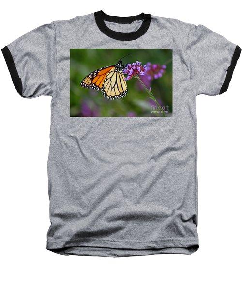 Monarch Butterfly In Garden Baseball T-Shirt