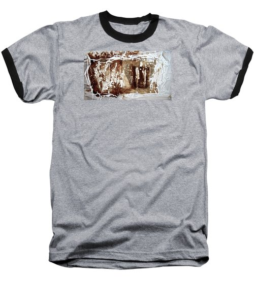 Baseball T-Shirt featuring the photograph Anton Chekhov's Seagull by Danica Radman