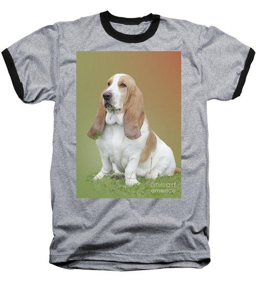 A Basset Hound Portrait Baseball T-Shirt by Linsey Williams