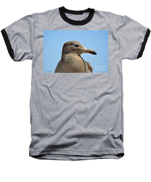 A Brown Gull In Profile Baseball T-Shirt by Susan Wiedmann