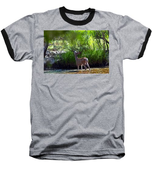A Buck Feeding Baseball T-Shirt