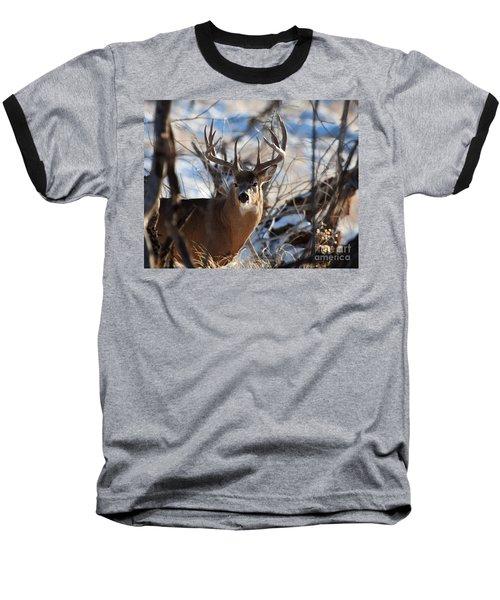 A Buck In The Bush Baseball T-Shirt