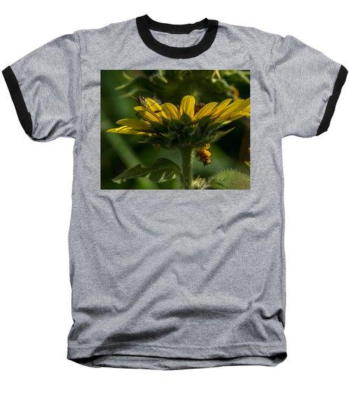 A Bugs World Baseball T-Shirt
