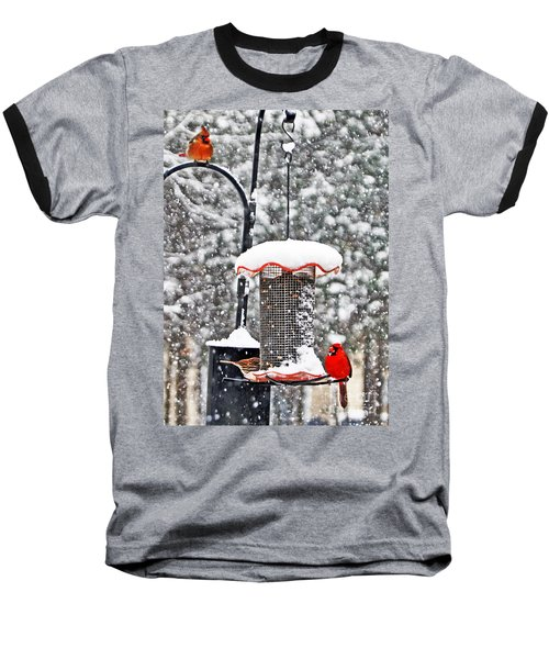 A Cardinal Winter Baseball T-Shirt