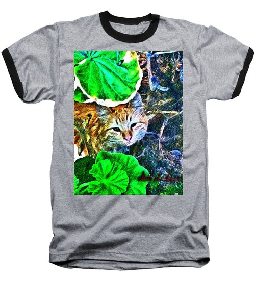 A Curious Cat Baseball T-Shirt