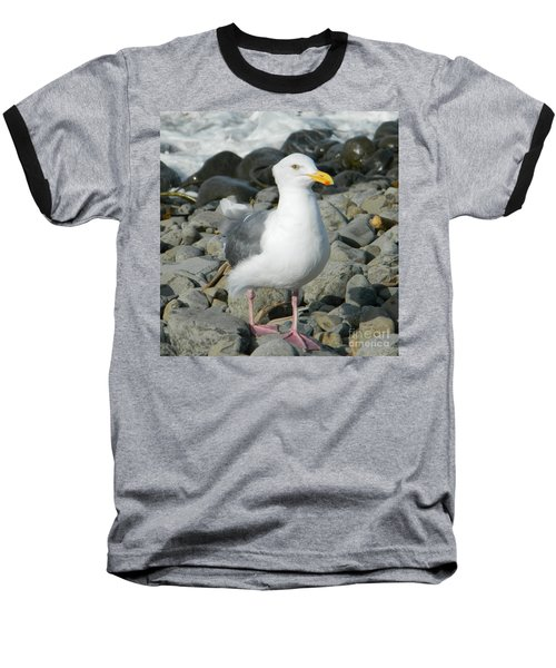 Baseball T-Shirt featuring the photograph A Curious Seagull by Chalet Roome-Rigdon