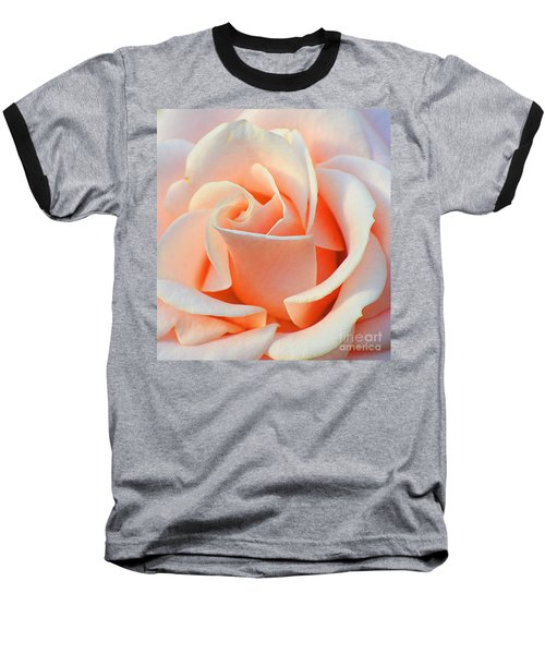 A Delicate Rose Baseball T-Shirt by Cindy Manero