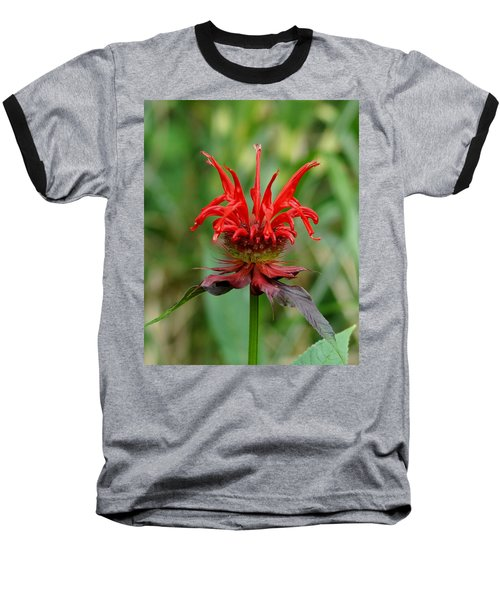 A Flowering Red Castle Beauty Baseball T-Shirt