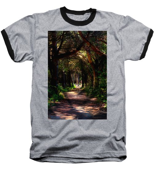 A Forest Path -dungeness Spit - Sequim Washington Baseball T-Shirt