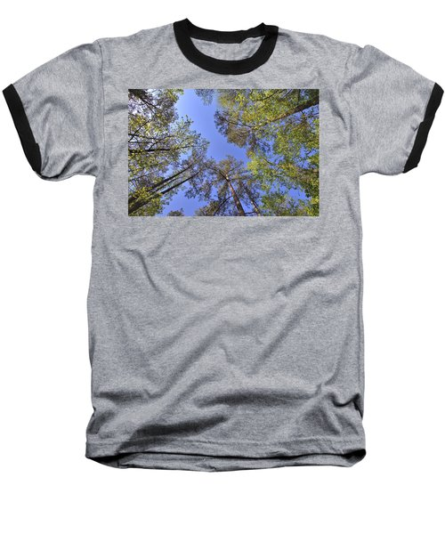 A Forest Sky Baseball T-Shirt