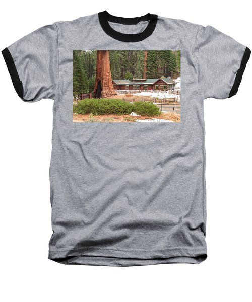 A Giant Among Trees Baseball T-Shirt by Muhie Kanawati