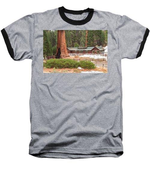 A Giant Among Trees Baseball T-Shirt
