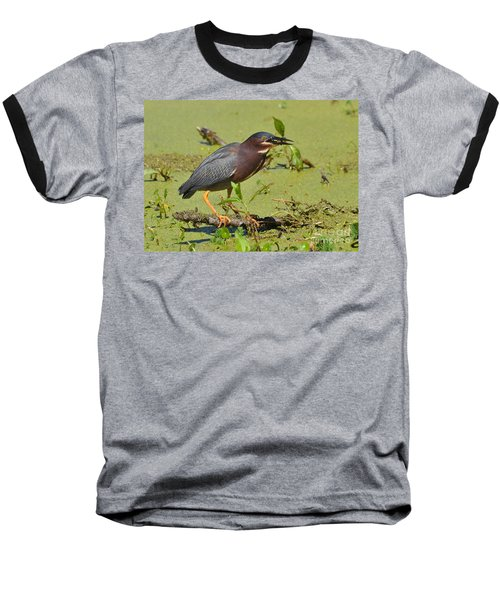 Baseball T-Shirt featuring the photograph A Greenbacked Heron's Breakfast by Kathy Baccari