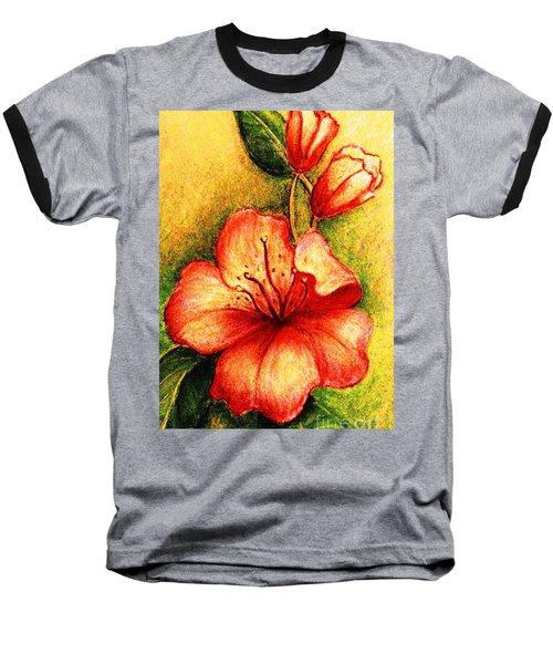 A Harbinger Of Springtime Baseball T-Shirt by Hazel Holland