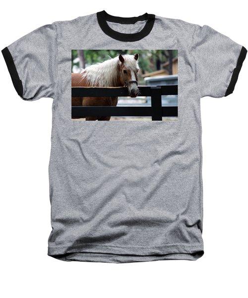A Hilton Head Island Horse Baseball T-Shirt by Kim Pate