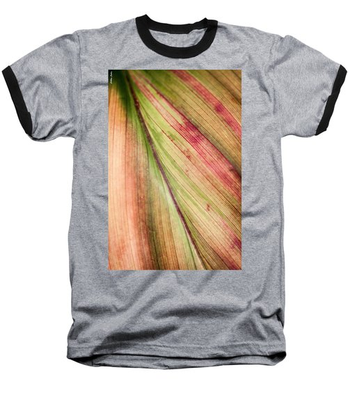 A Leaf Baseball T-Shirt