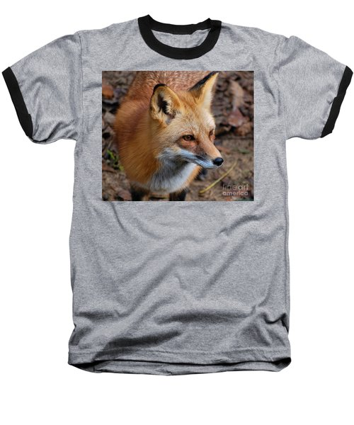 A Little Red Fox Baseball T-Shirt