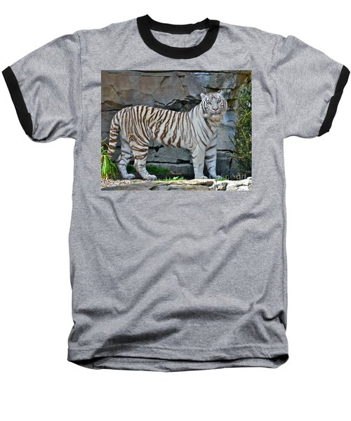 A Magnificent Creature Baseball T-Shirt by Carol  Bradley