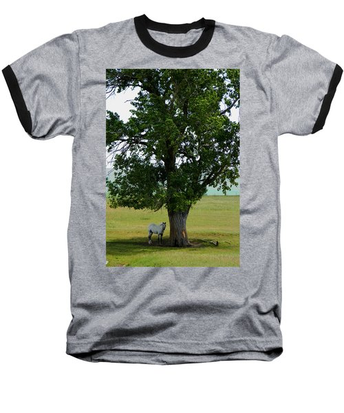 A One Horse Tree And Its Horse					 Baseball T-Shirt