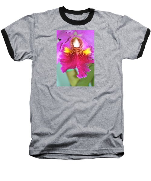 A Purple Cattelaya  Orchid Baseball T-Shirt