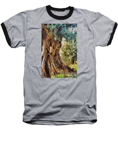A Really Old Olive Tree Baseball T-Shirt by Dragica  Micki Fortuna