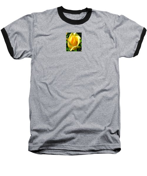 A Rose For My Friend Baseball T-Shirt by Janice Westerberg