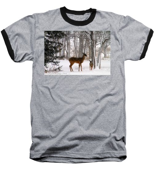 A Snowy Path Baseball T-Shirt