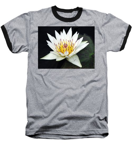 Botanical Beauty Baseball T-Shirt