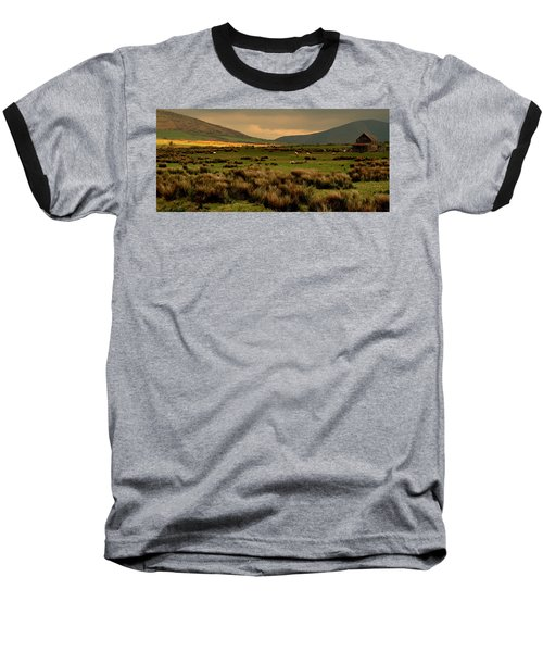Baseball T-Shirt featuring the photograph A Spot Of Sunshine by Barbara Walsh